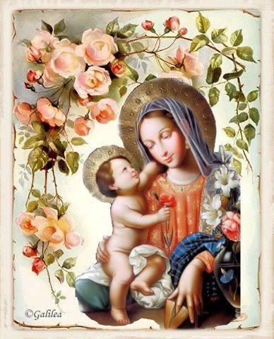 Rosas para la Virgen María cada día en el mes de mayo del 11 al 20