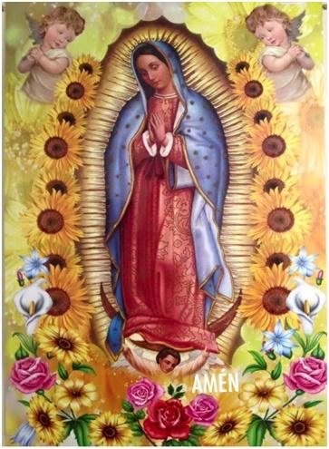 Ramos de Rosas para mi Madre la Virgen de Guadalupe mi Morenita