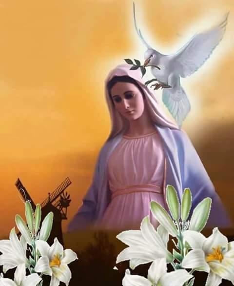 Madre Reina María Virgen en nuestras almas danos la Paz